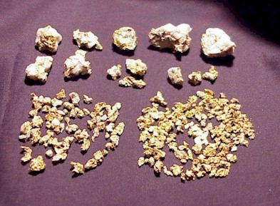 Osceola Gold Nuggets